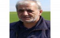 Aydın Canıyevdən Mirşahinə: