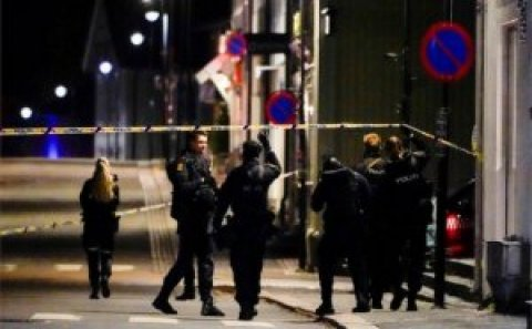 Norveç sakini ox və yayla küçələrə çıxıb, insanları öldürməyə başlayıb